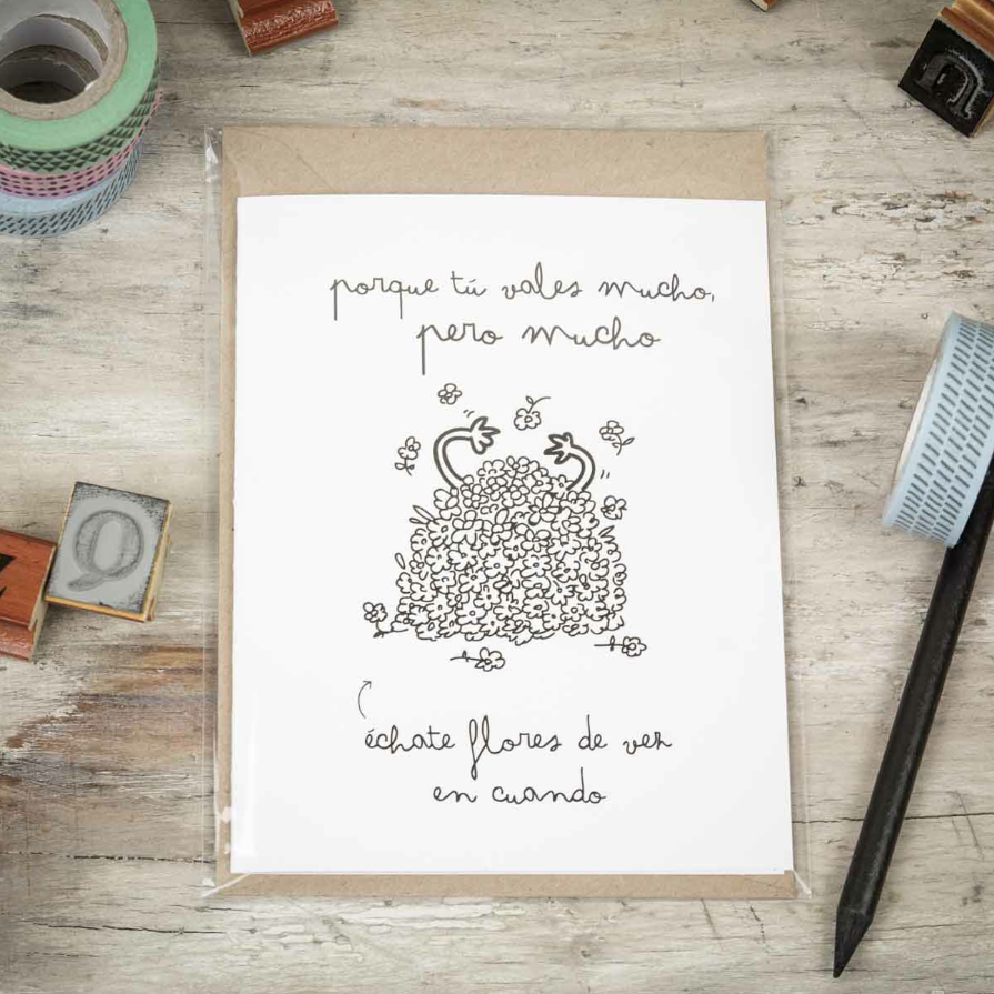 Mr_Wonderful_Shop_Tartjeta_porque_tu_vales_mucho_echate_flores_01