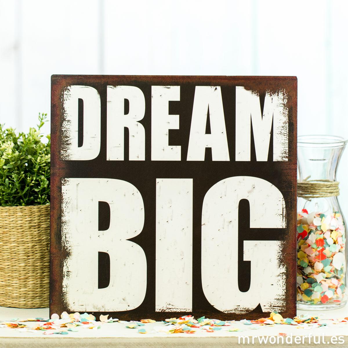 mrwonderful_62949b_placa-metalica_dream-big-68