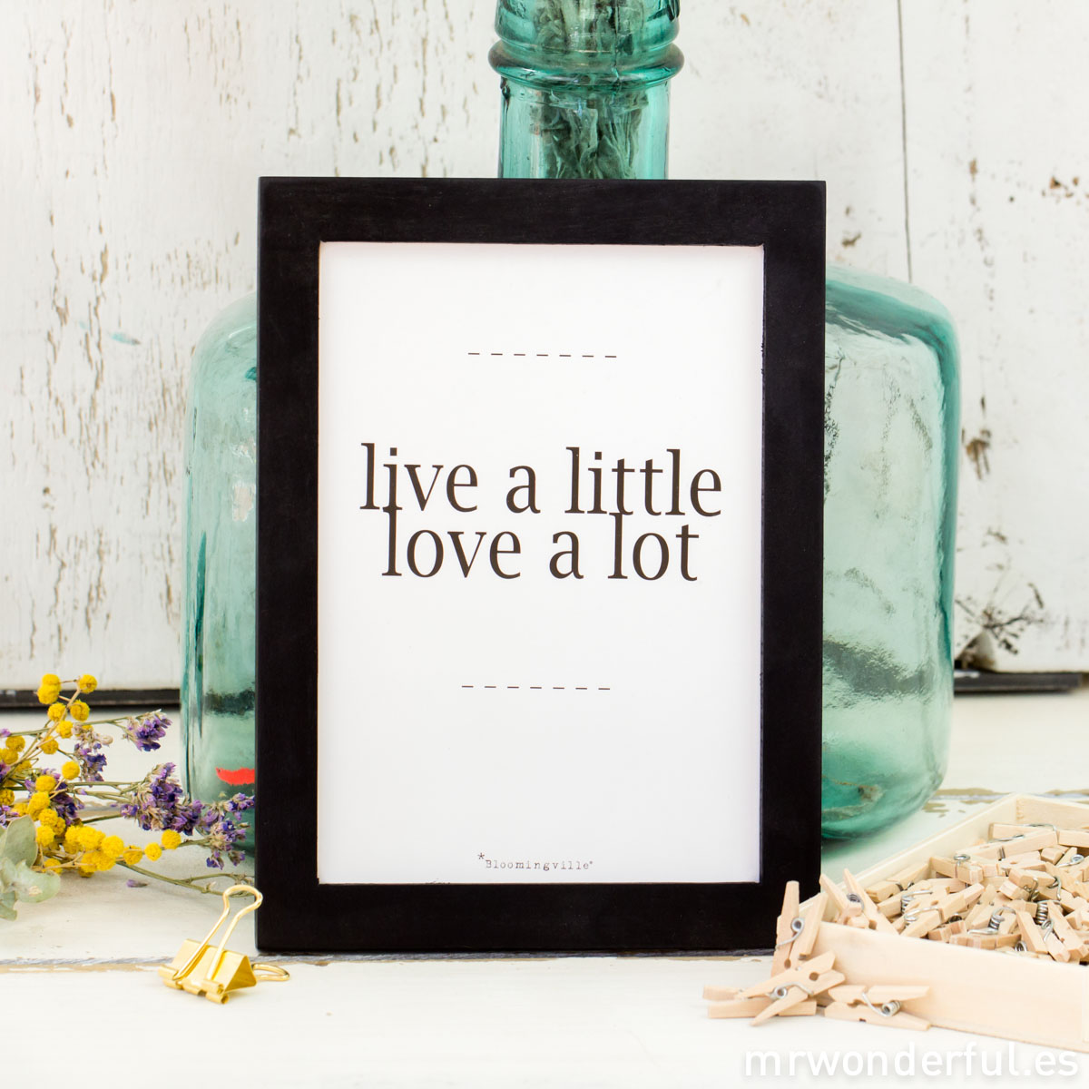 mrwonderful_50200032_cuadro-pequeño_live-little-love-lot-3