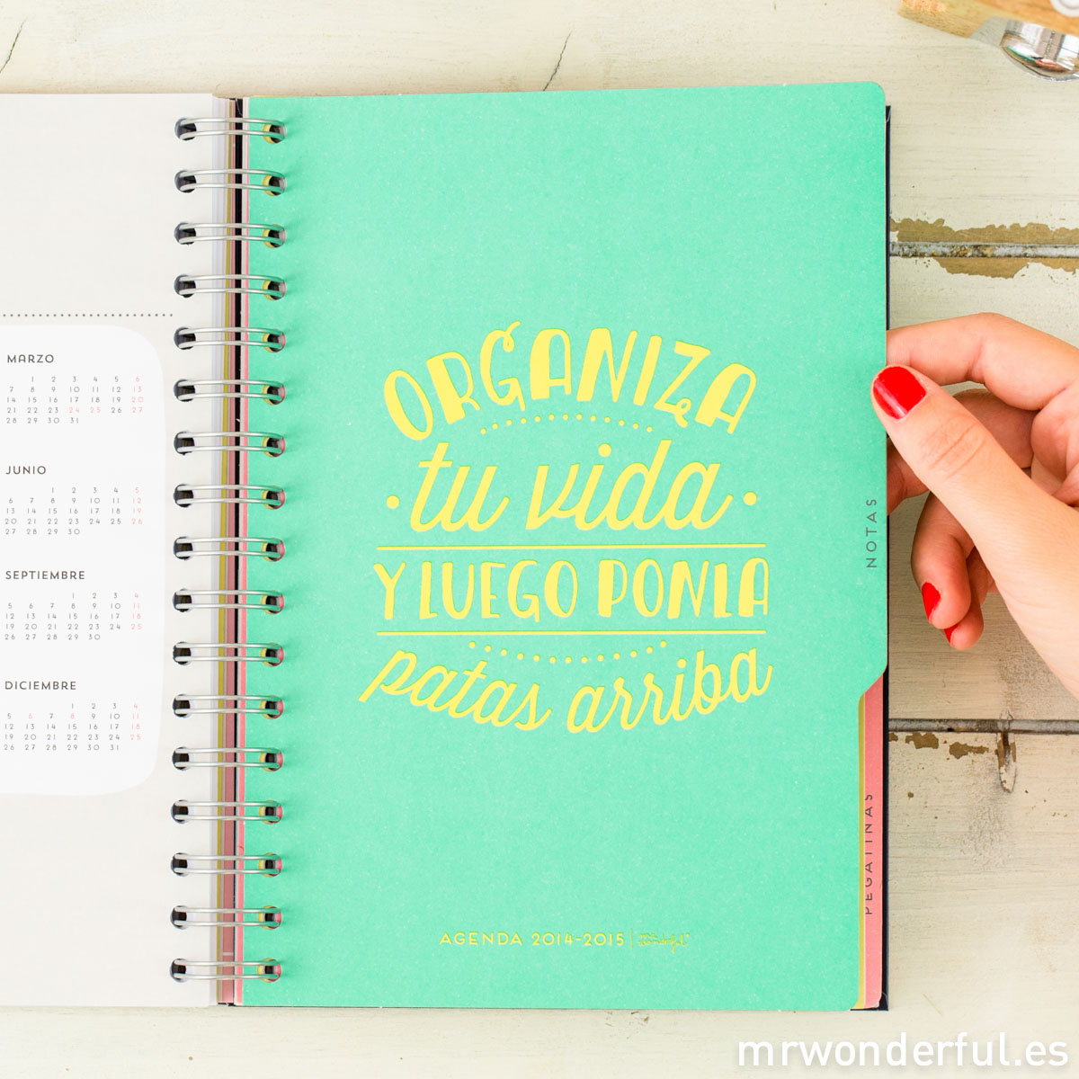 mrwonderful_AGENDA-WONDER_2014-216
