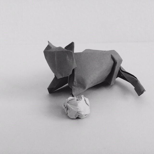 mrwonderful_Ross_Symons_origami_white_onrice_011
