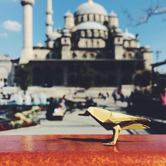 mrwonderful_Ross_Symons_origami_white_onrice_014