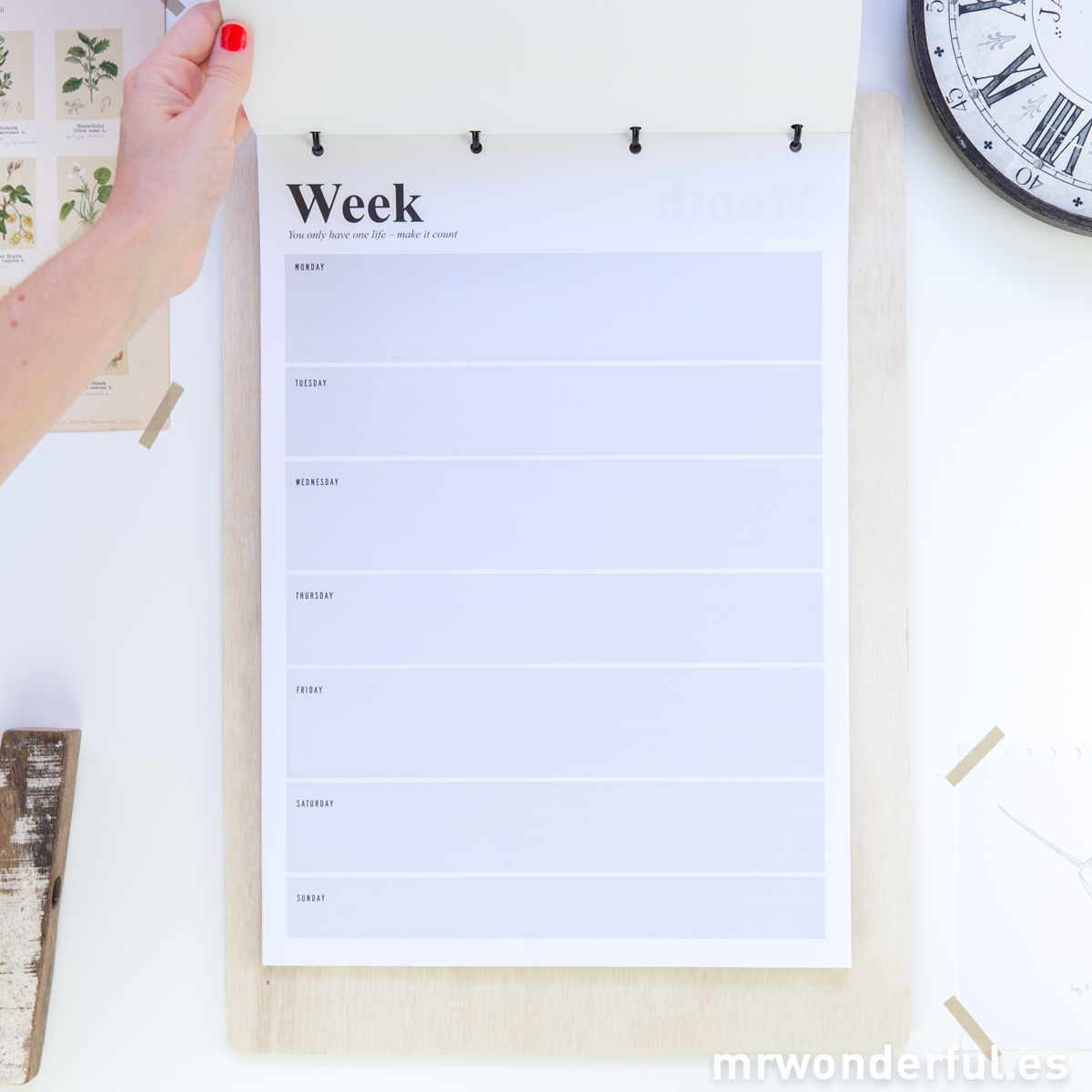 mrwonderful_SU0260_clipboard-xxl-anillas-days-6
