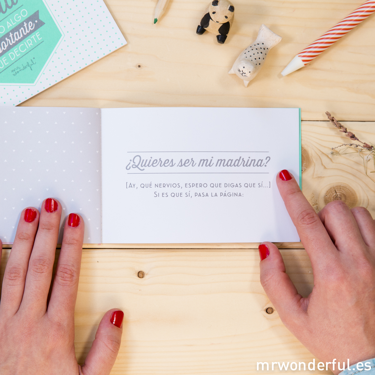 Mr.Wonderful libro madrina
