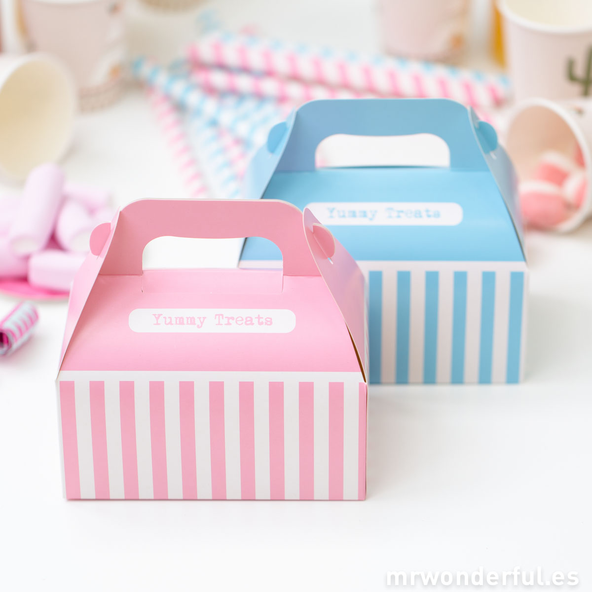 Mr.Wonderful set de cajas picnic de color rosa y azul