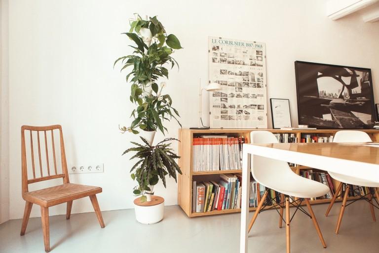 No hace falta tener un casoplón para tener un jardín vertical en casa