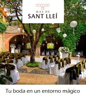 Banner Sant Llei