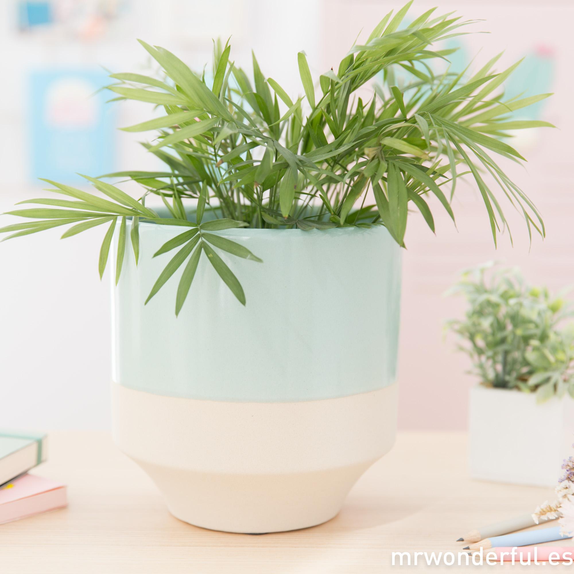 mrwonderful_PRA02983UN_maceta-ceramica_mint-5