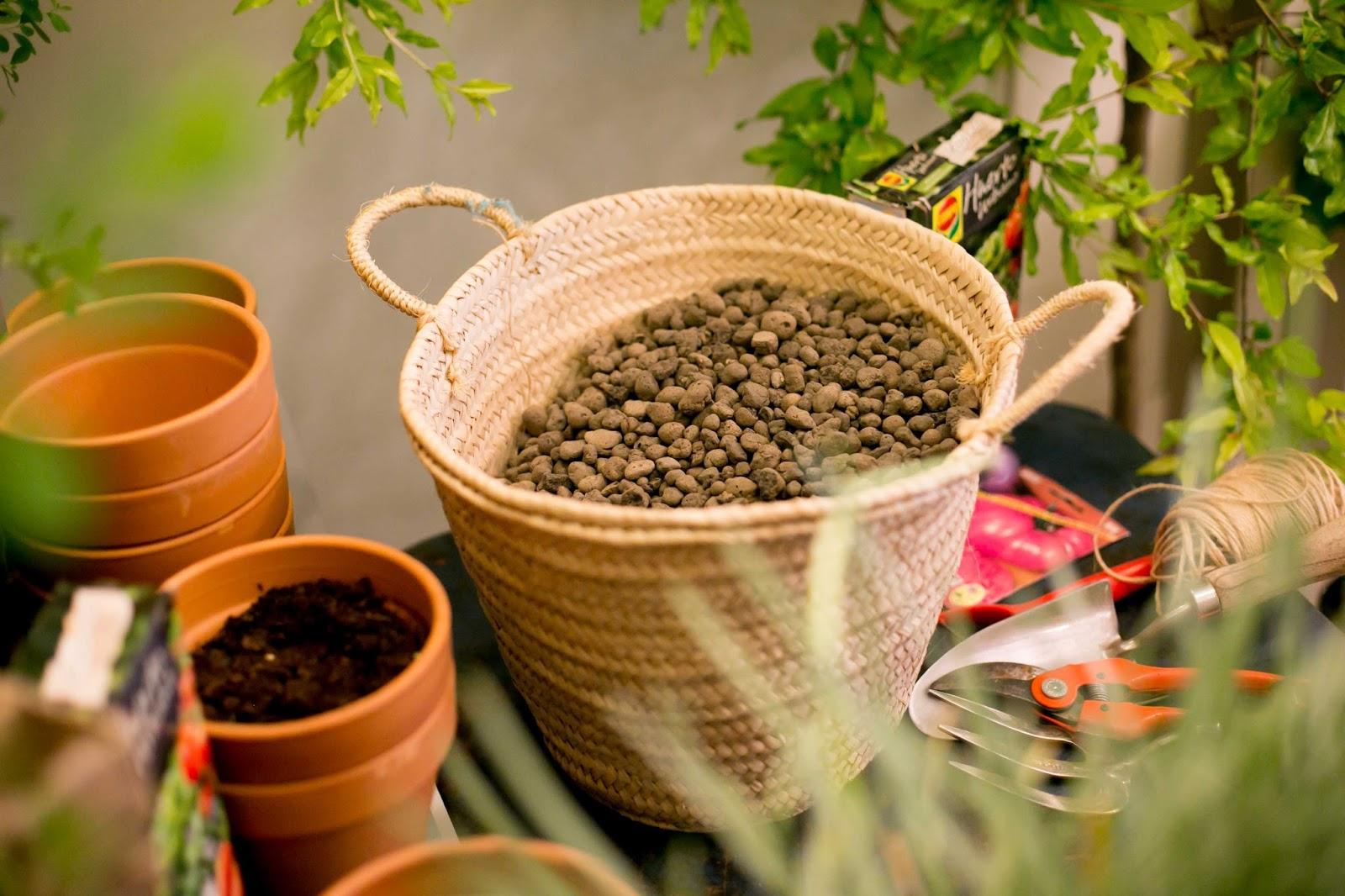 tierra para plantar