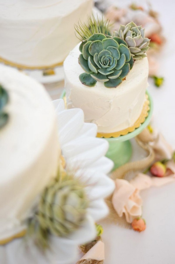 pastel boda cactus 10