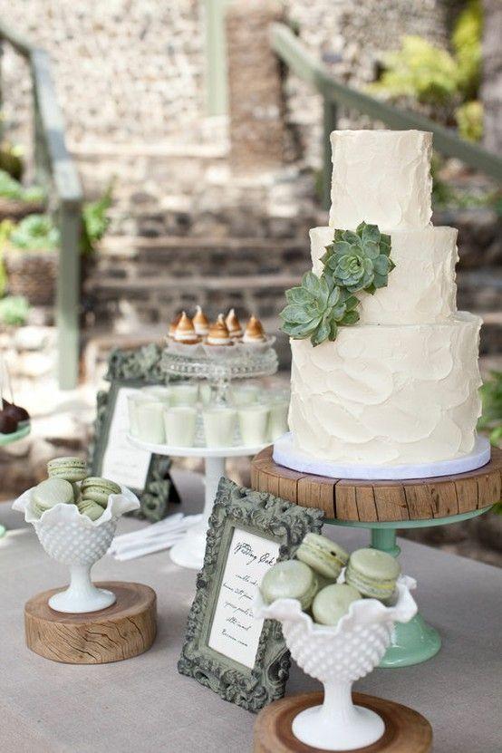 pastel boda cactus 13