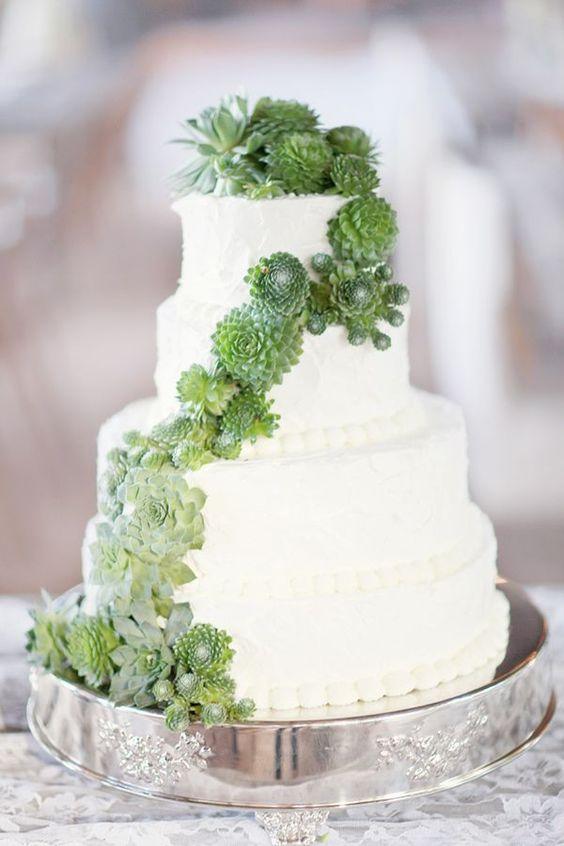 pastel boda cactus 2