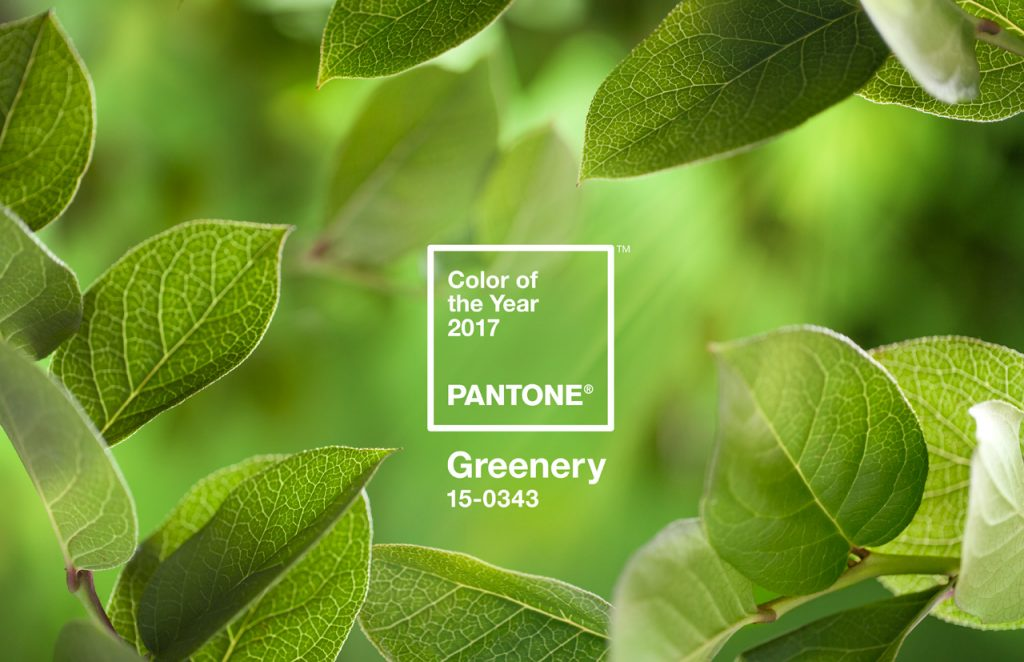 3066350-inline-14-pantone-announces-the-2017-color-of-the-year-greenery-1024x662