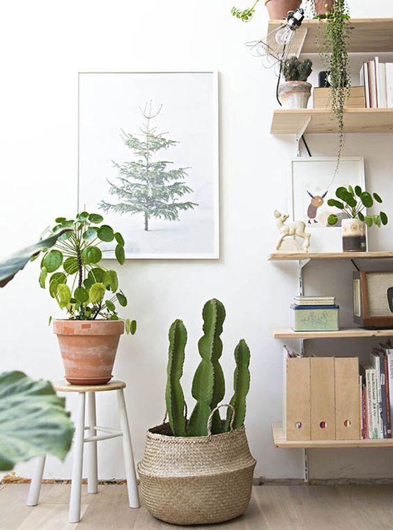 Inspiración deco: Las cestas no solo sirven para la compra