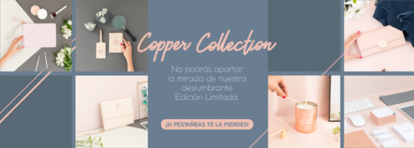 Copper Collection de Mr. Wonderful