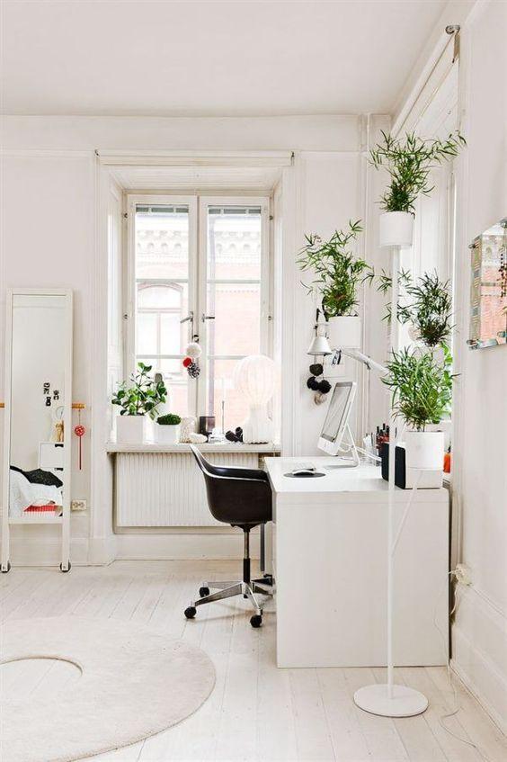 Cómo decorar escritorios con plantas
