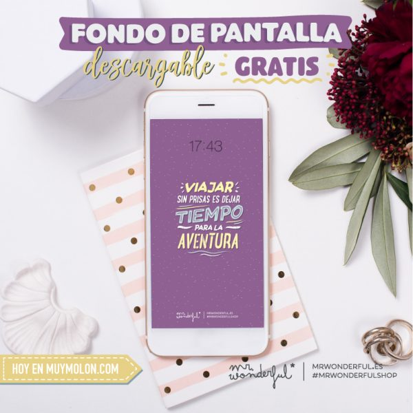 Fondos de pantalla gratuitos Mr. Wonderful